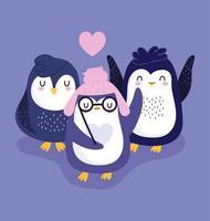 pingouins chapeau chaud lunettes coeurs oiseaux d'amour