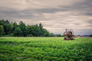 Old water pump on a potato field photo