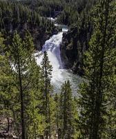 Yellowstone Waterfall. photo