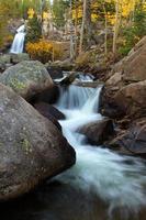 alberta falls en el parque nacional de las montañas rocosas foto