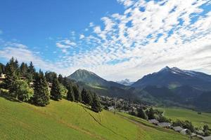 Green alpine meadow photo