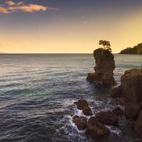 Portofino park. Pine tree rock cliff on sunset. Ligury, Italy
