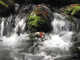 folhas de outono e cachoeiras