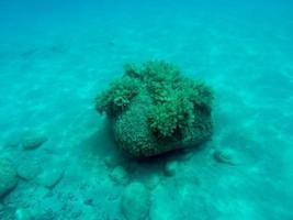 Under water shot of big rock