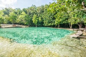 estanque natural