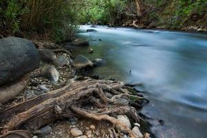 el río banias en israel foto