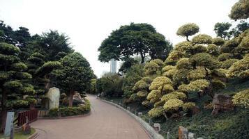 Buddism Garden Pathway