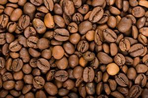 coffee beans texture photo