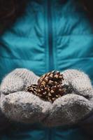 Woman holding pine tree cones in woolen mittens