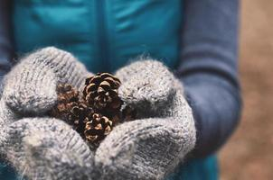 Woman holding pine tree cones in woolen mittens, close up