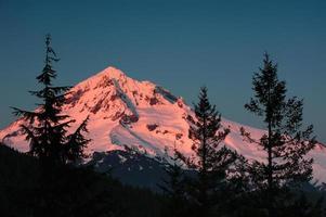 Alpenglow on Mt. Hood photo