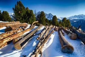 Cut wood logs in front of panorama of snow-capped peaks
