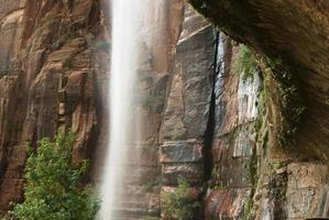 Zion weeping rock photo
