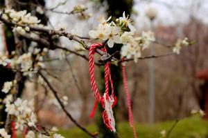 flores y cinta de la memoria foto