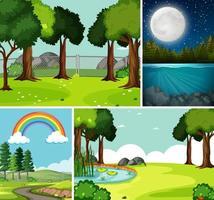 cuatro escenas diferentes en la naturaleza.