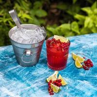 bebida de frutas de arándano rojo con limón y hielo