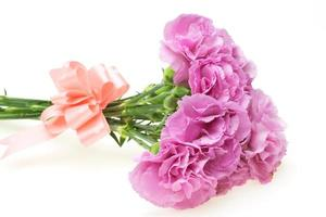 Bouquet of carnation photo