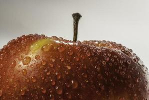 Red and green apple, with drops of water