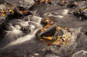 Small stream at autumn