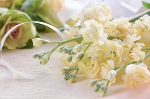 white stock flowers