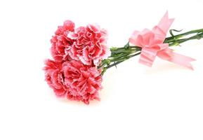 Bouquet of carnation with a ribbon photo