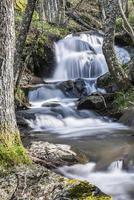 paisaje con un río de montaña y cascadas. foto