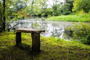 banco de madera rústica con vistas al estanque foto