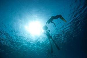 Freedivers preparing to descent