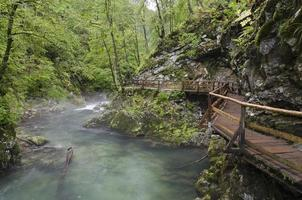 Vintgar, Slovenia photo