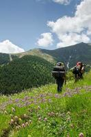 los excursionistas entre flores
