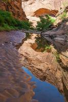 Pool of water - Hunter Canyon Hiking Trail Moab Utah