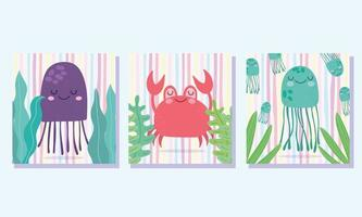 Crab jellyfishes leaves algae marine life cards