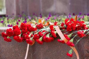 many red carnations with St. George ribbon on memorial