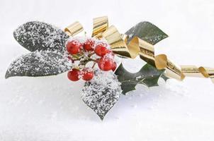 acebo en la nieve con una cinta dorada foto