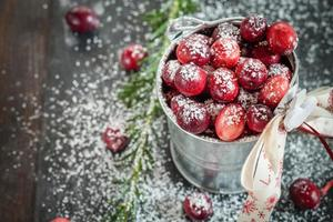 Cranberries in small zinc bucket, decorated for Christmas