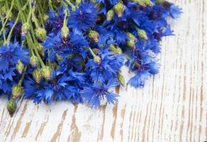 Cornflowers photo