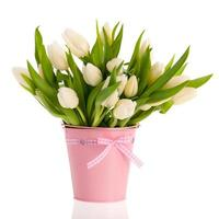 White tulips in pink bucket