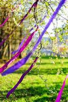 Blooming branch decorated with purple ribbons / wind