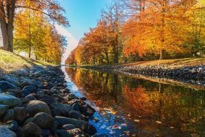 Water stream between trees in autumn