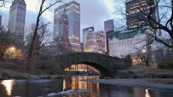 Central Park Timelapse at dawn, New York video