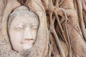 Buddha Head, Wat Maha That temple in Ayutthaya Thailand photo