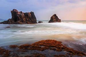 Sea coast in sunset