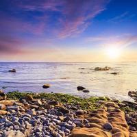onda do mar traz algas ao pôr do sol