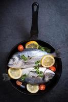 Dorada fish in pan