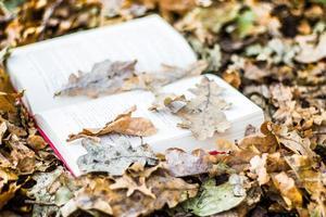 livre en feuilles d'automne