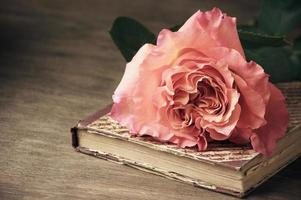 Rose and vintage book photo