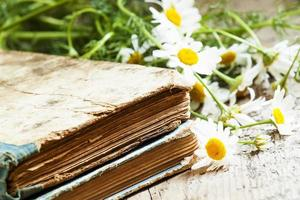 Old books, bouquet of field daisies