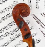 perfil de violín