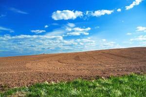 campo de tierra cultivable agrícola en la primavera para cultivos