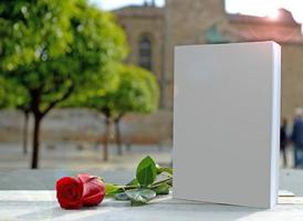 red rose, white book. The garden of medieval church castle photo